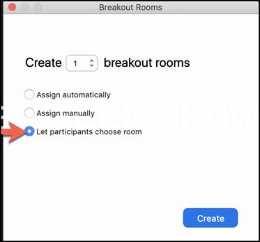 Zoom breajout Room Creation screenshot